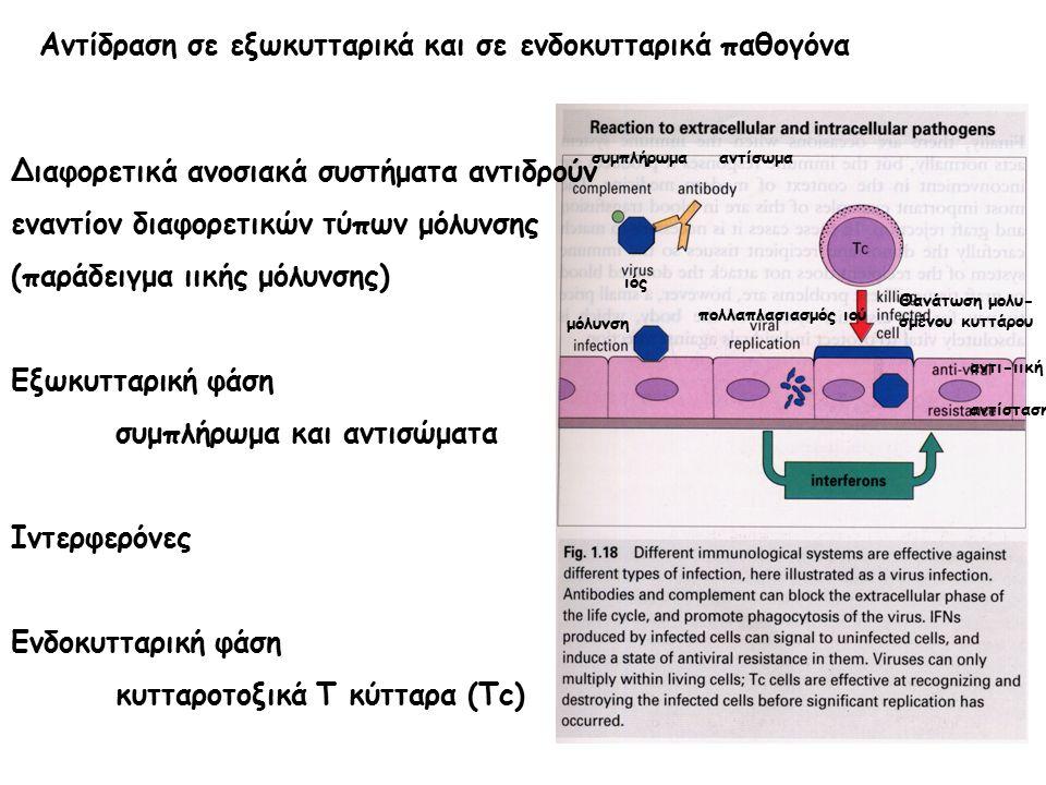 Αντίδραση σε εξωκυτταρικά και σε ενδοκυτταρικά παθογόνα