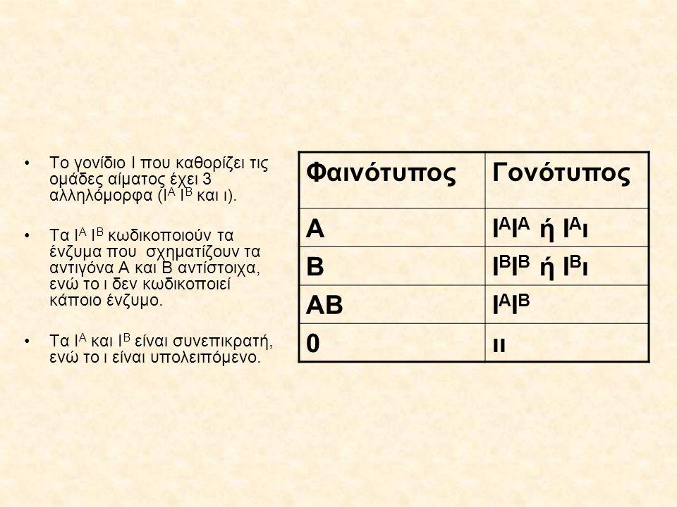 Φαινότυπος Γονότυπος Α ΙΑΙΑ ή ΙΑι Β ΙΒΙΒ ή ΙΒι ΑΒ ΙΑΙΒ ιι
