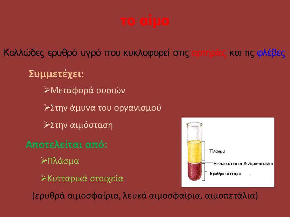 το αίμα Συμμετέχει: Αποτελείται από: