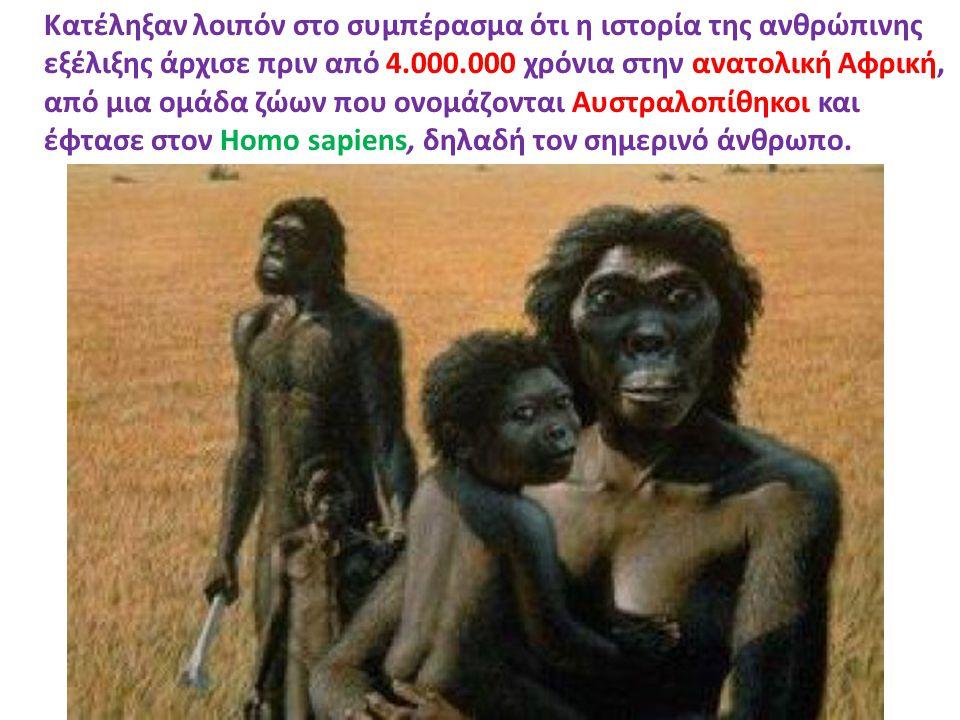 Κατέληξαν λοιπόν στο συμπέρασμα ότι η ιστορία της ανθρώπινης εξέλιξης άρχισε πριν από 4.000.000 χρόνια στην ανατολική Αφρική, από μια ομάδα ζώων που ονομάζονται Αυστραλοπίθηκοι και