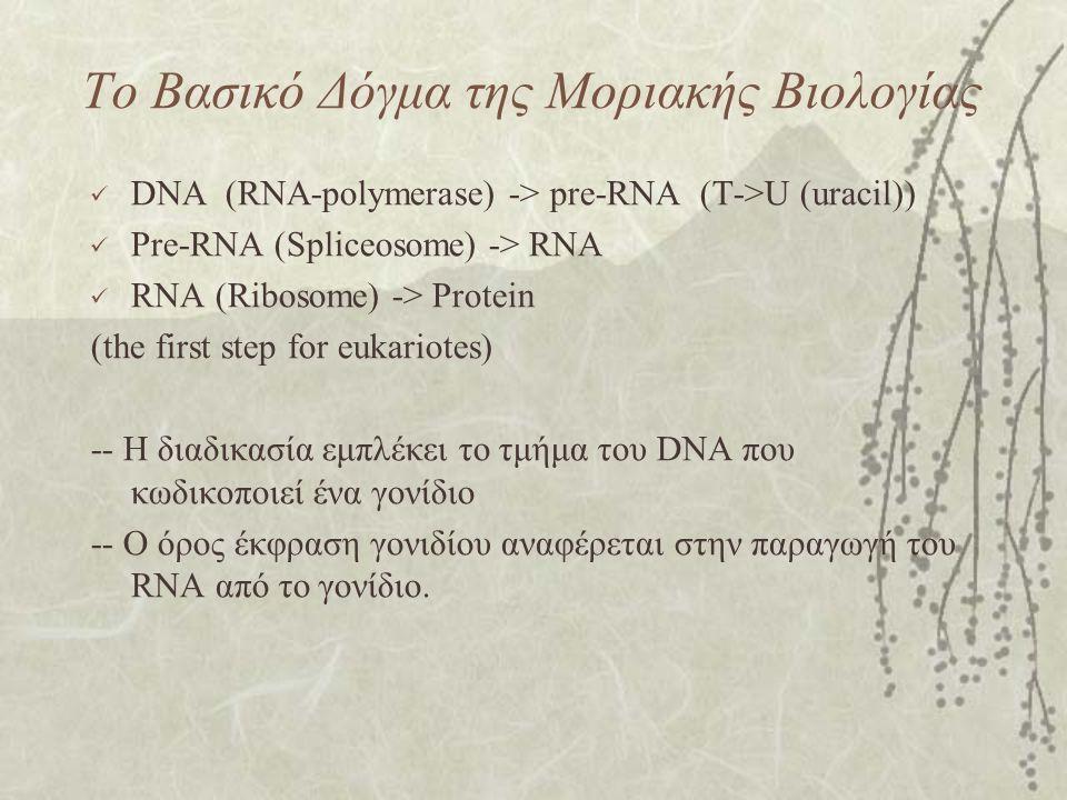 Το Βασικό Δόγμα της Μοριακής Βιολογίας
