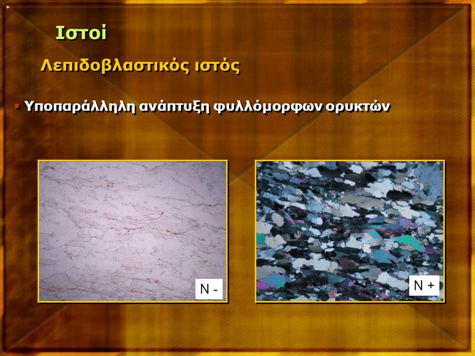Ιστοί Λεπιδοβλαστικός ιστός Υποπαράλληλη ανάπτυξη φυλλόμορφων ορυκτών