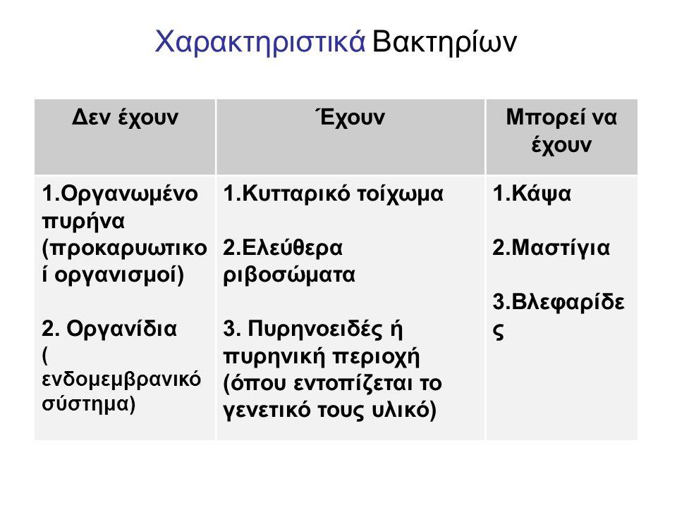 Χαρακτηριστικά Βακτηρίων