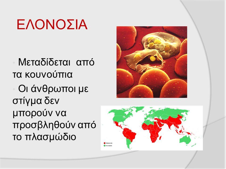 ΕΛΟΝΟΣΙΑ Μεταδίδεται από τα κουνούπια