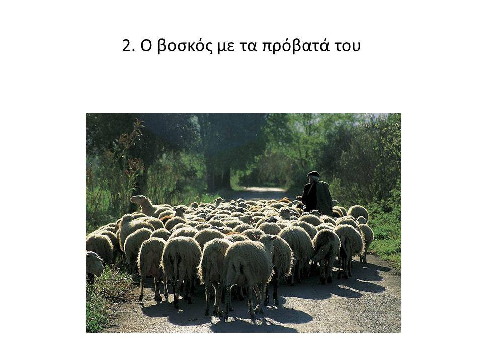 2. Ο βοσκός με τα πρόβατά του