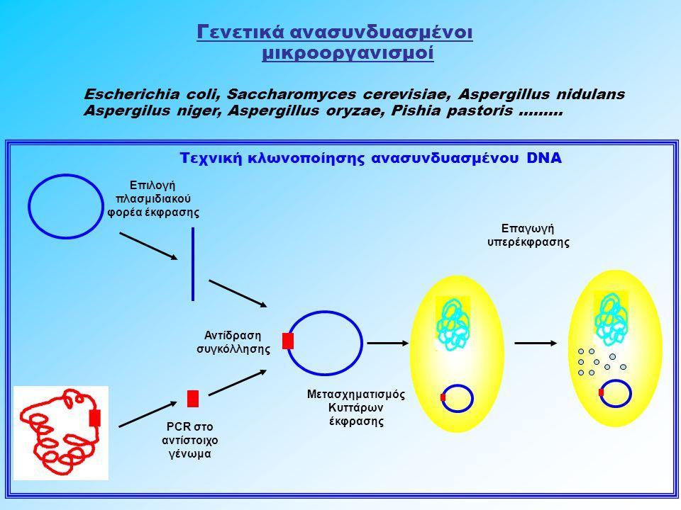 Γενετικά ανασυνδυασμένοι μικροοργανισμοί