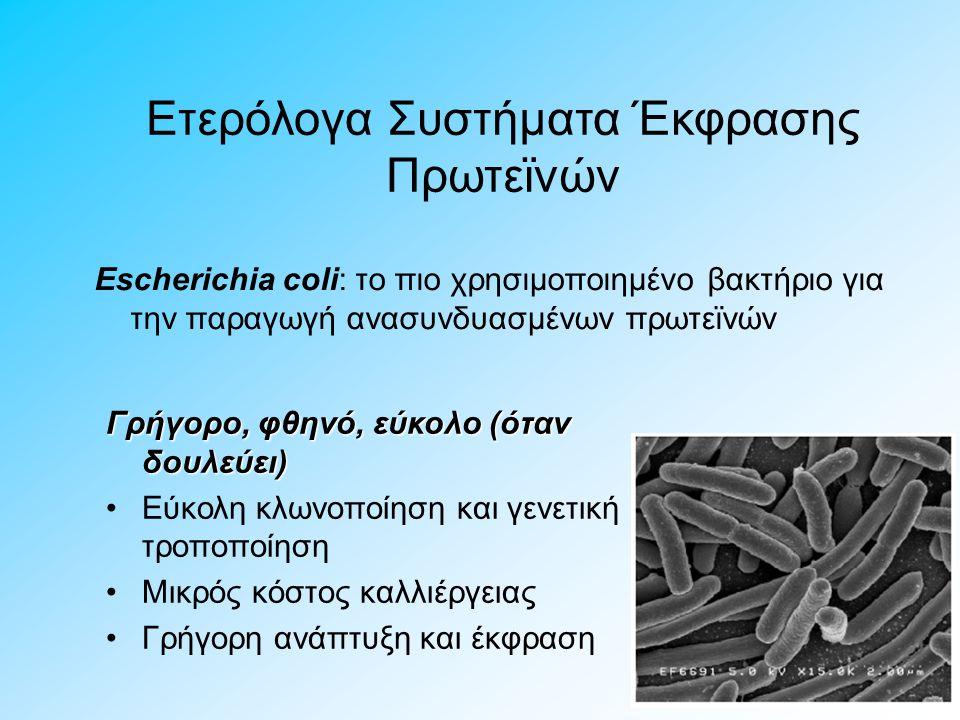 Ετερόλογα Συστήματα Έκφρασης Πρωτεϊνών