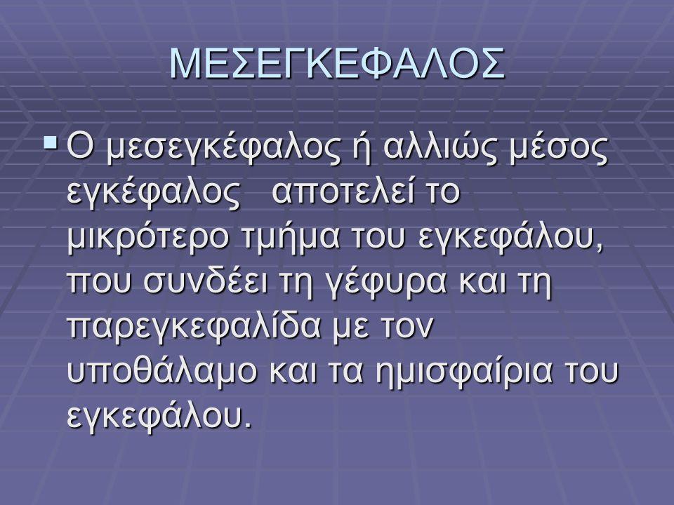 ΜΕΣΕΓΚΕΦΑΛΟΣ