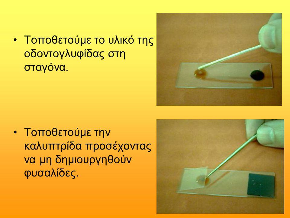 Τοποθετούμε το υλικό της οδοντογλυφίδας στη σταγόνα.