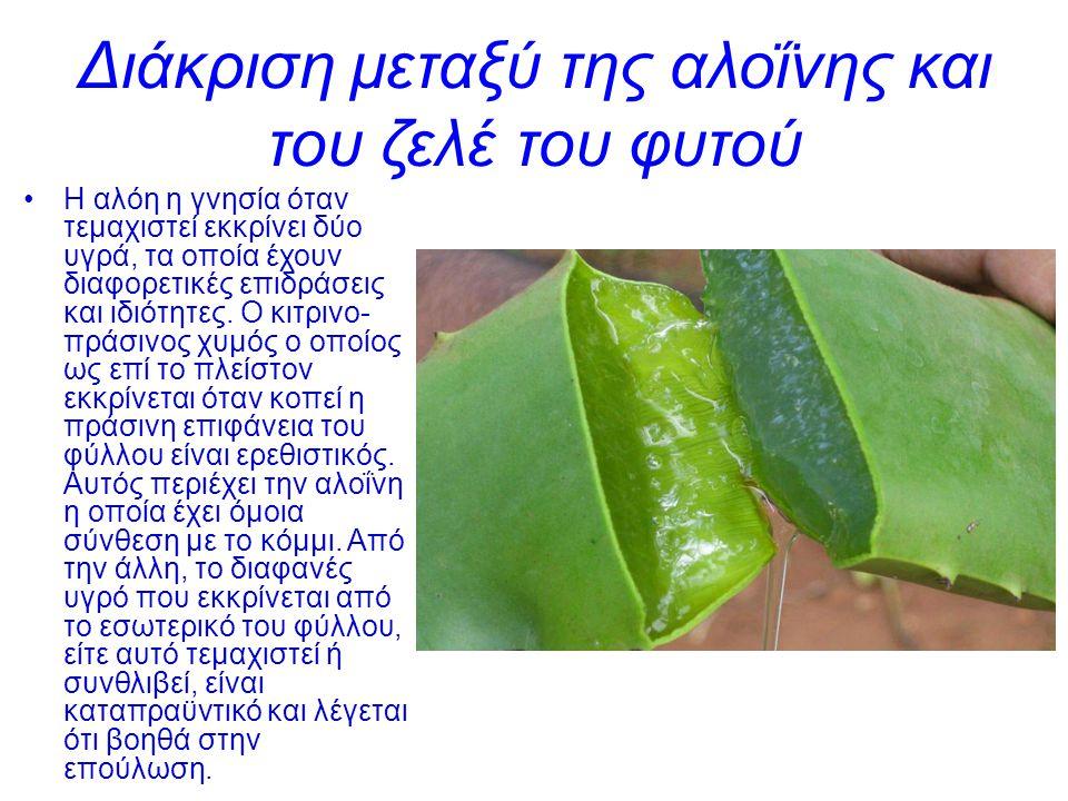 Διάκριση μεταξύ της αλοΐνης και του ζελέ του φυτού