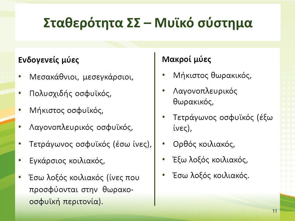 Λειτουργικά χαρακτηριστικά των μυών