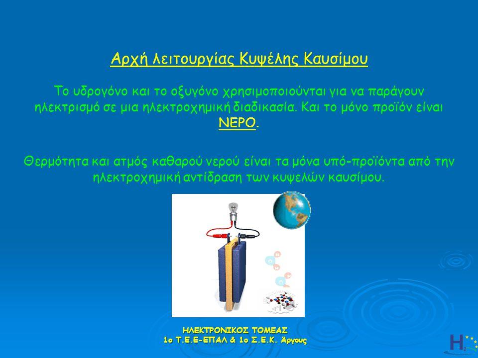 1ο Τ.Ε.Ε-ΕΠΑΛ & 1ο Σ.Ε.Κ. Άργους
