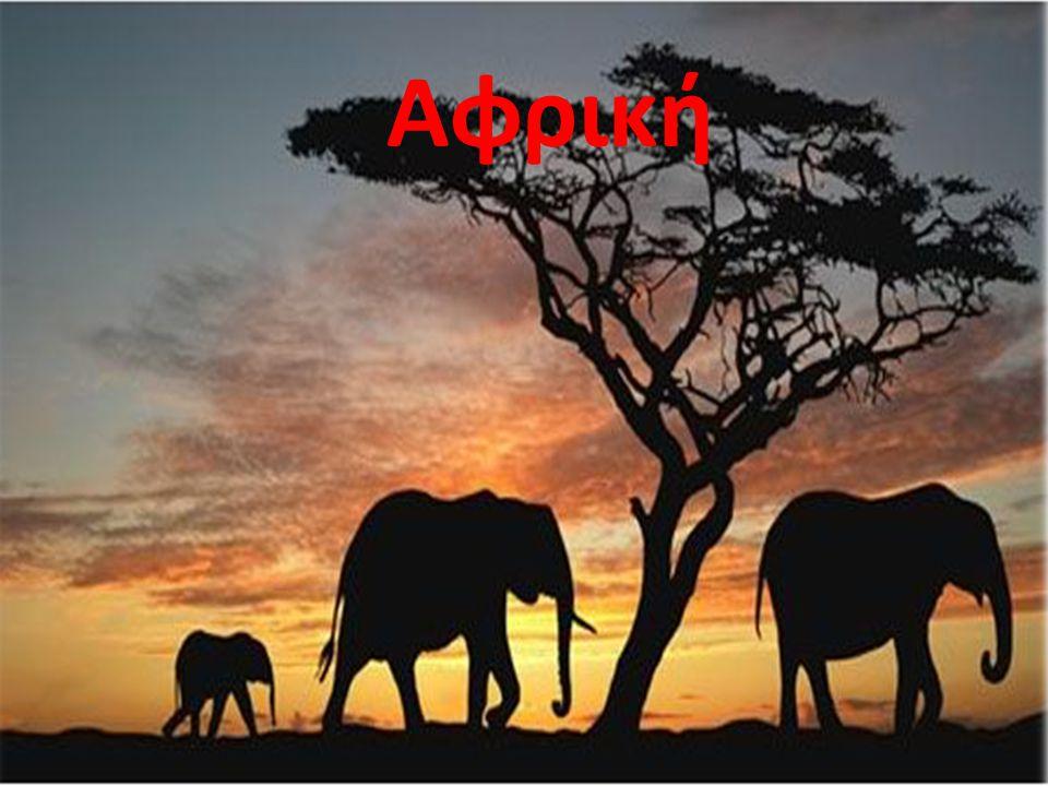 Αφρική
