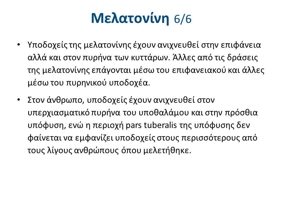 Βιoρρυθμοί και μελατονίνη