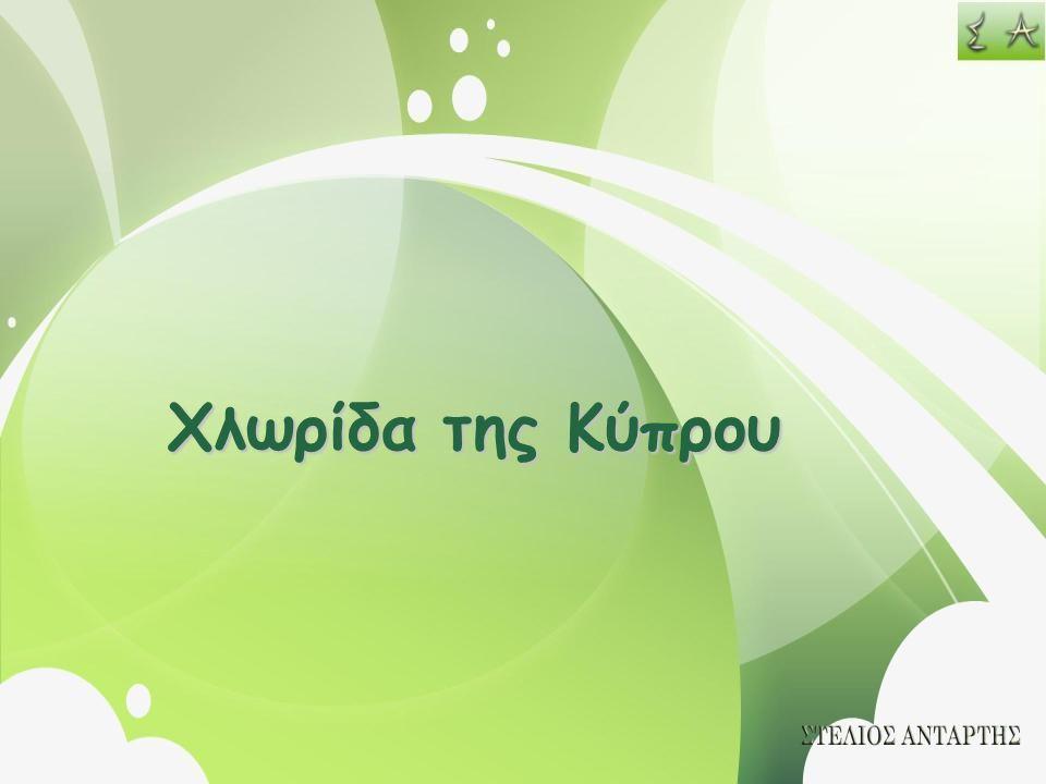 Χλωρίδα της Κύπρου