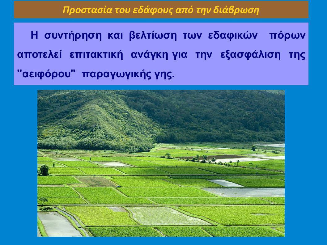 Προστασία του εδάφους από την διάβρωση