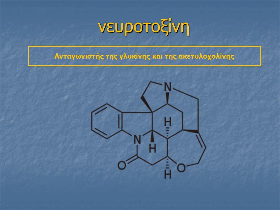 Ανταγωνιστής της γλυκίνης και της ακετυλοχολίνης