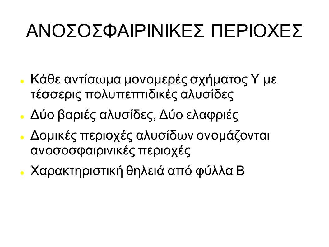 ΑΝΟΣΟΣΦΑΙΡΙΝΙΚΕΣ ΠΕΡΙΟΧΕΣ