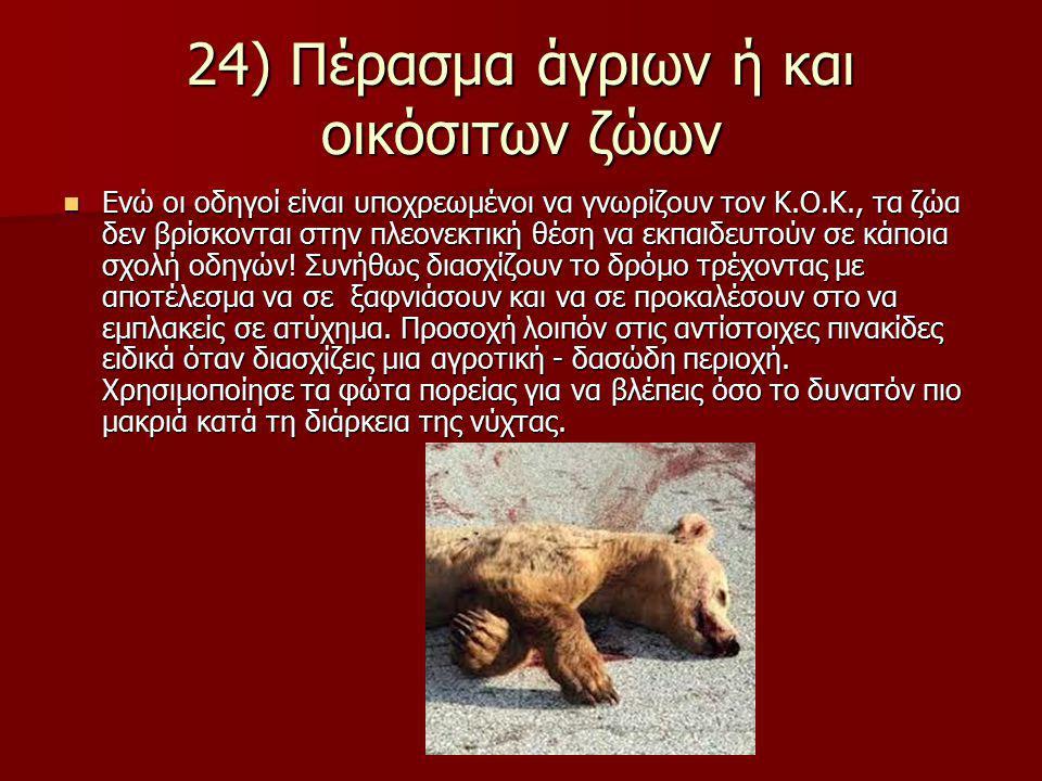 24) Πέρασμα άγριων ή και οικόσιτων ζώων