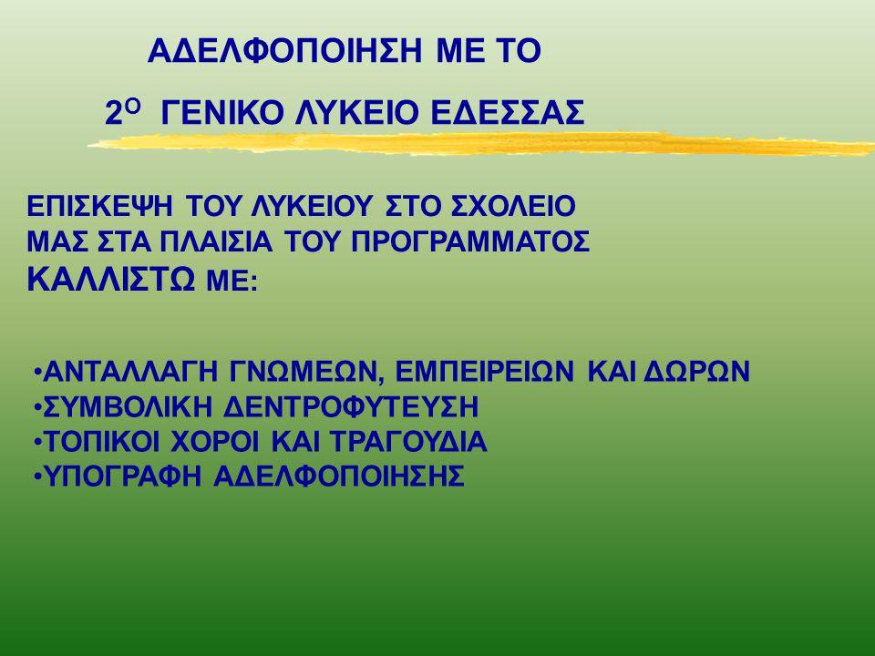 2Ο ΓΕΝΙΚΟ ΛΥΚΕΙΟ ΕΔΕΣΣΑΣ