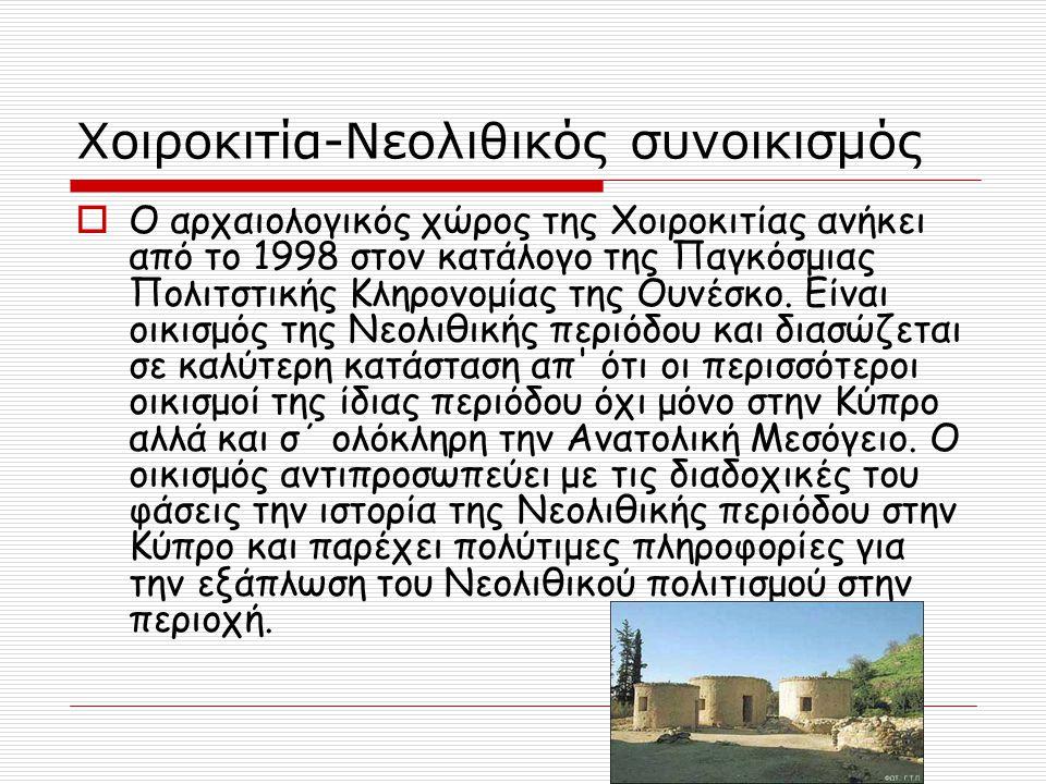 Χοιροκιτία-Νεολιθικός συνοικισμός