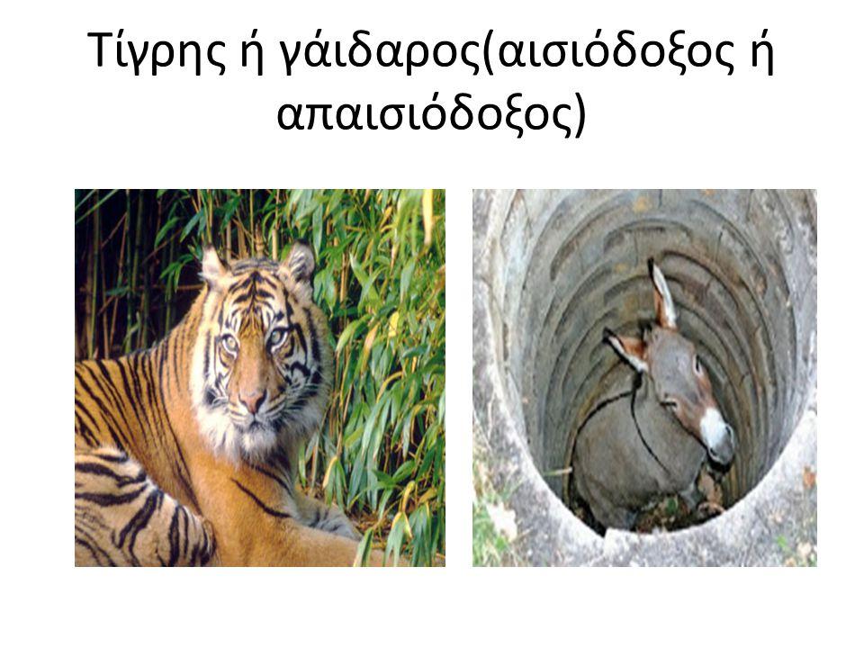 Τίγρης ή γάιδαρος(αισιόδοξος ή απαισιόδοξος)