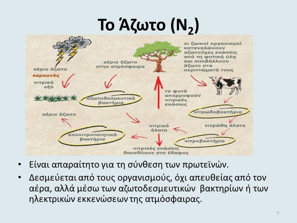 Το Άζωτο (Ν2) Είναι απαραίτητο για τη σύνθεση των πρωτεϊνών.
