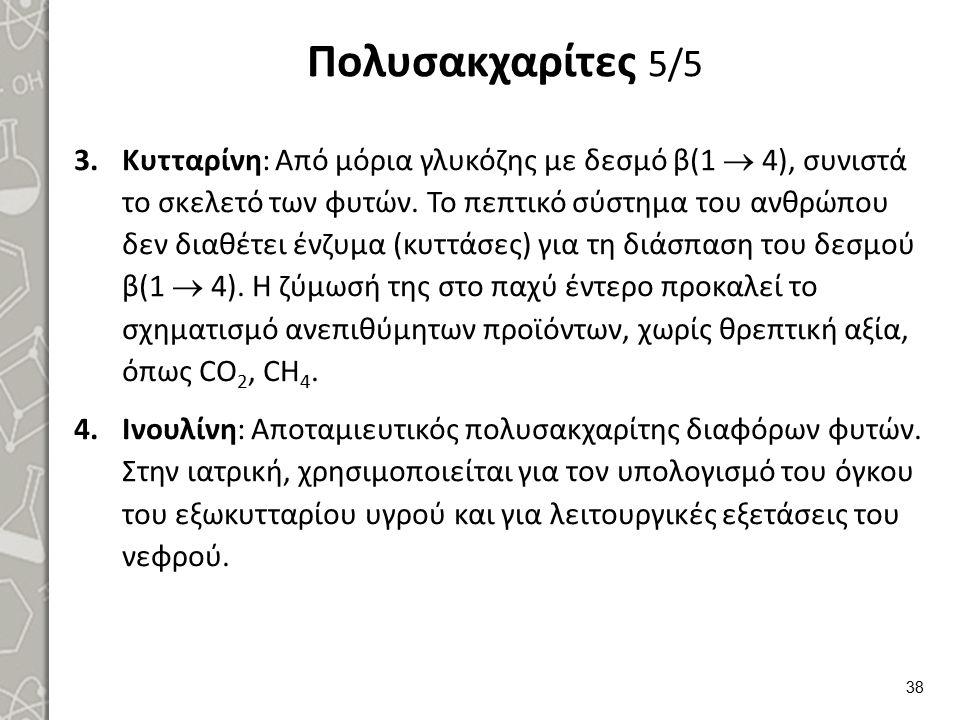 Ετεροπολυσακχαρίτες 1/3
