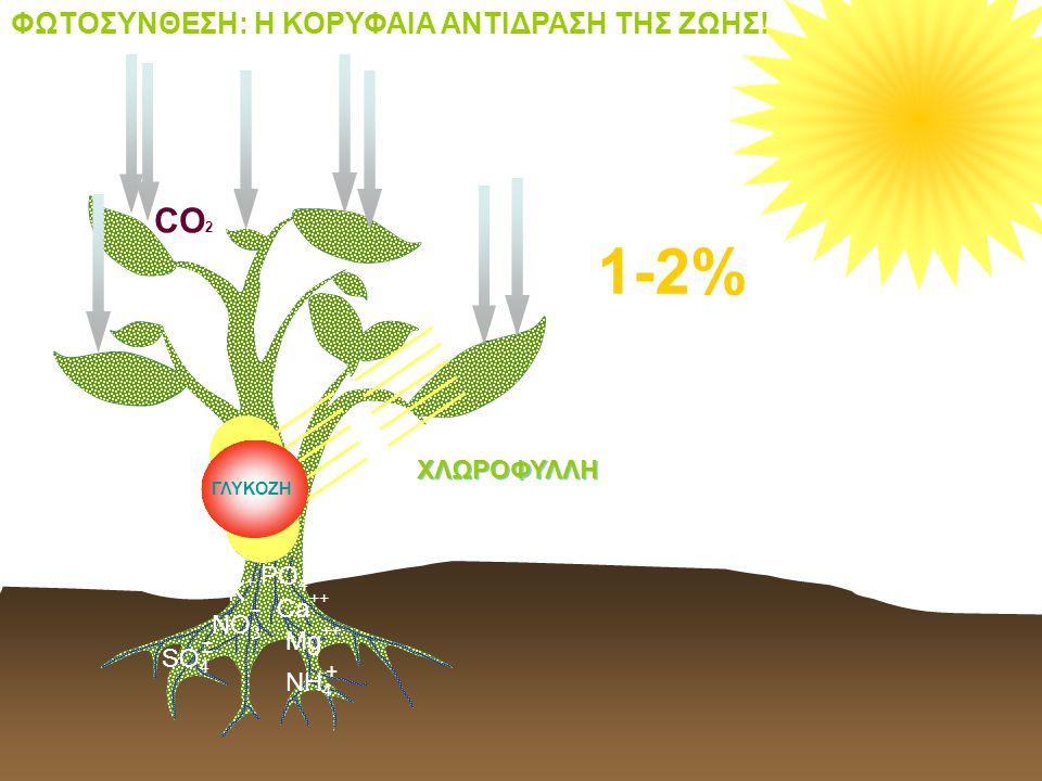 1-2% CO2 CO2 H2O H2O ΦΩΤΟΣΥΝΘΕΣΗ: Η ΚΟΡΥΦΑΙΑ ΑΝΤΙΔΡΑΣΗ ΤΗΣ ΖΩΗΣ!