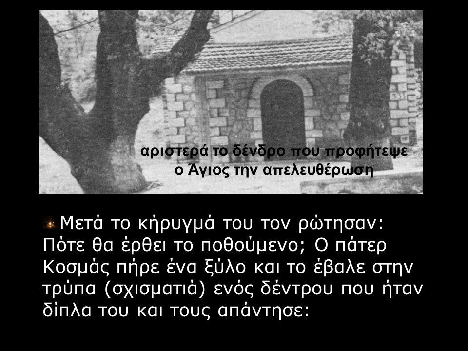 αριστερά το δένδρο που προφήτεψε ο Άγιος την απελευθέρωση