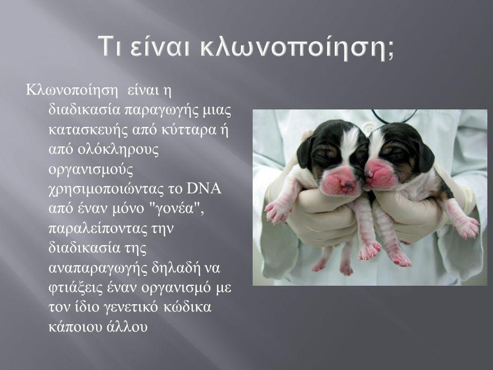 Τι είναι κλωνοποίηση;