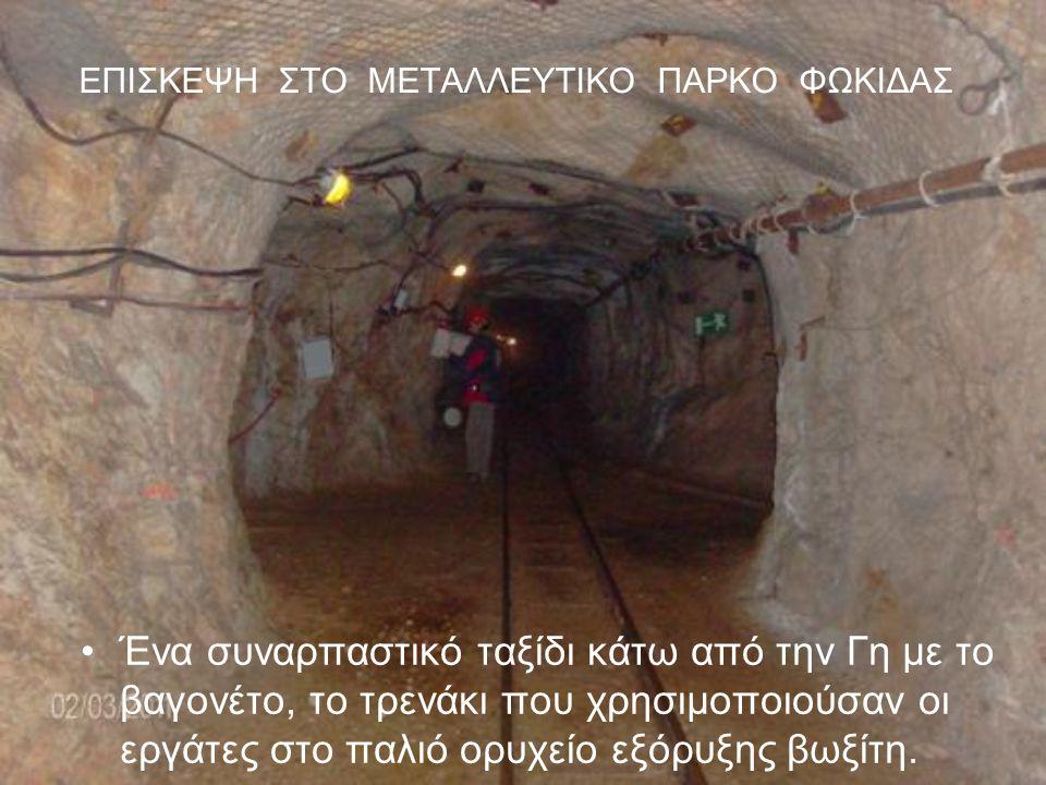 ΕΠΙΣΚΕΨΗ ΣΤΟ ΜΕΤΑΛΛΕΥΤΙΚΟ ΠΑΡΚΟ ΦΩΚΙΔΑΣ