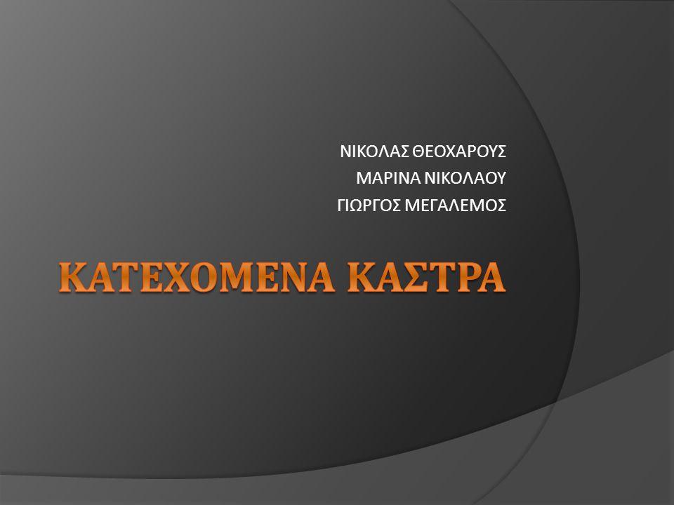 ΝΙΚΟΛΑΣ ΘΕΟΧΑΡΟΥΣ ΜΑΡΙΝΑ ΝΙΚΟΛΑΟΥ ΓΙΩΡΓΟΣ ΜΕΓΑΛΕΜΟΣ