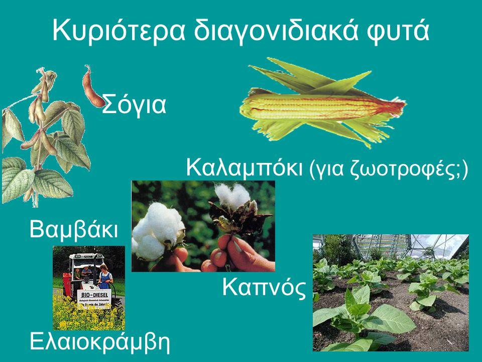 Κυριότερα διαγονιδιακά φυτά
