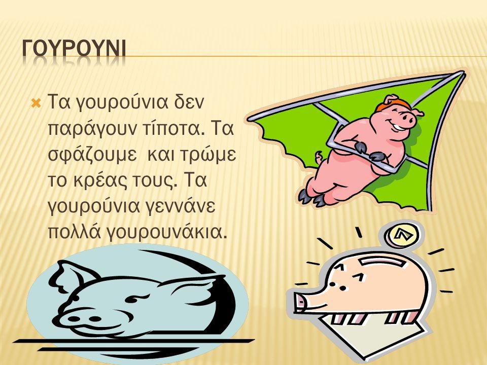 ΓΟΥΡΟΥΝΙ Τα γουρούνια δεν παράγουν τίποτα. Τα σφάζουμε και τρώμε το κρέας τους.