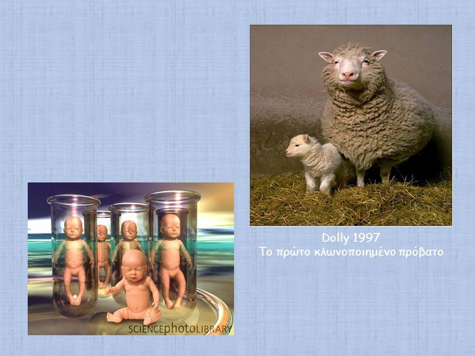Το πρώτο κλωνοποιημένο πρόβατο