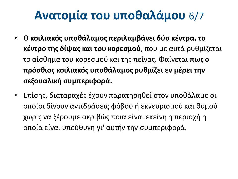 Ανατομία του υποθαλάμου 7/7
