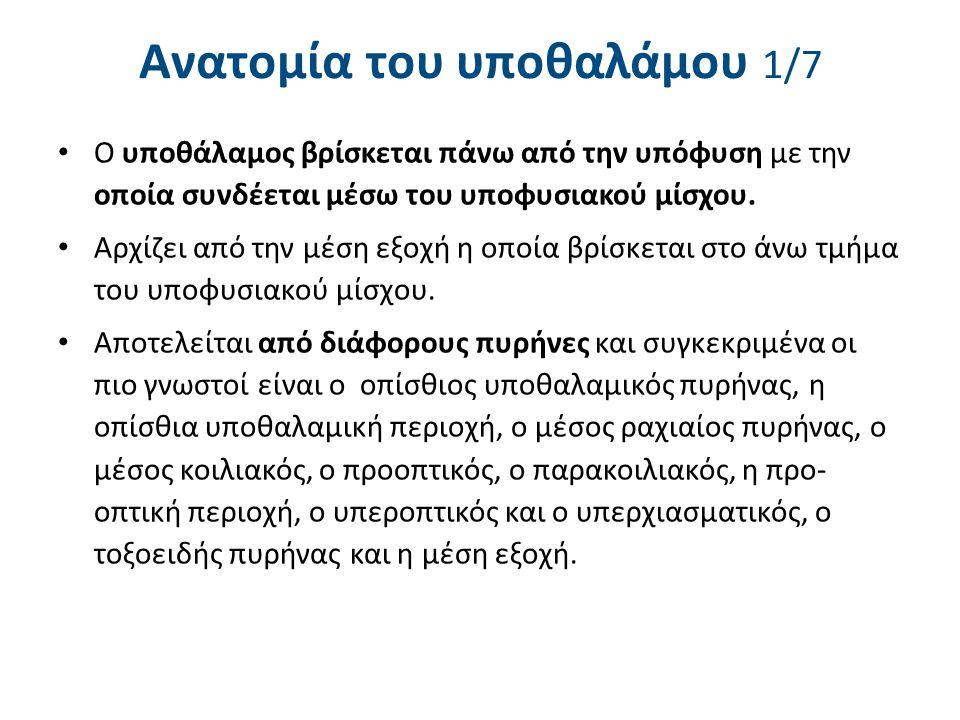Ανατομία του υποθαλάμου 2/7