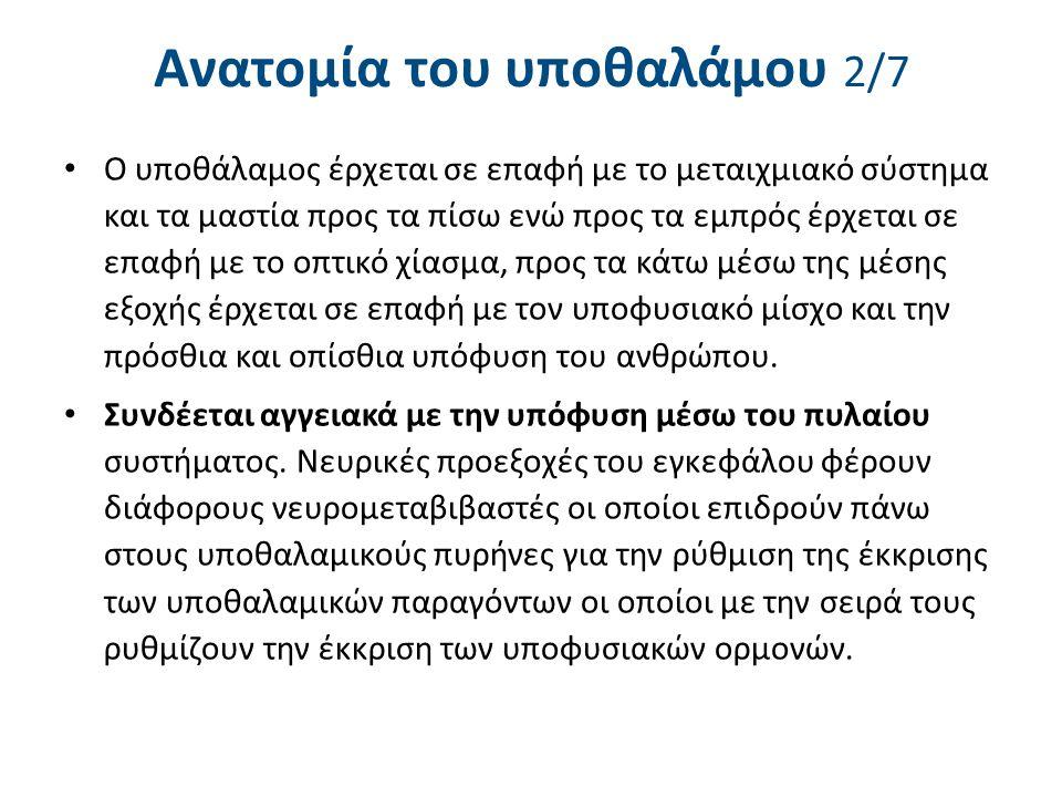 Ανατομία του υποθαλάμου 3/7