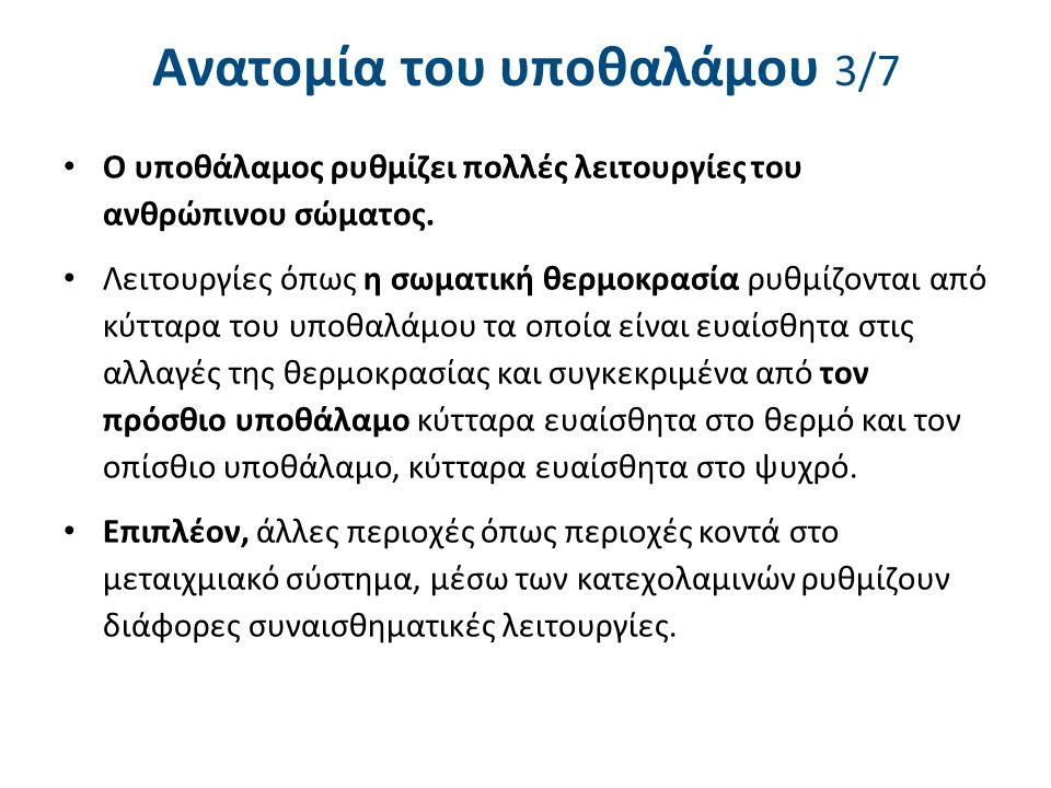 Ανατομία του υποθαλάμου 4/7