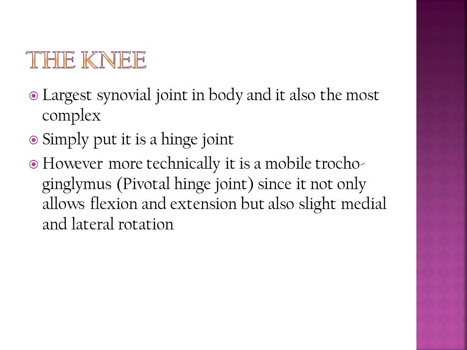 The Knee Largest synovial joint in body and it also the most complex