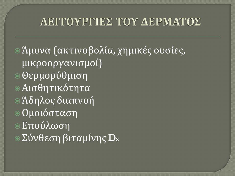 ΛΕΙΤΟΥΡΓΙΕΣ ΤΟΥ ΔΕΡΜΑΤΟΣ