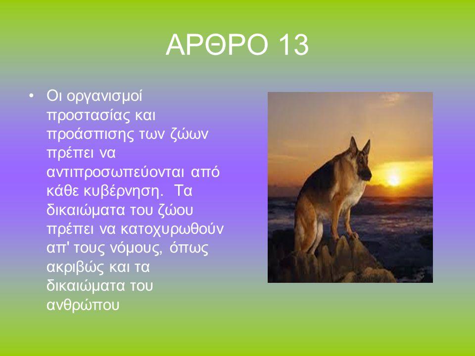 ΑΡΘΡΟ 13
