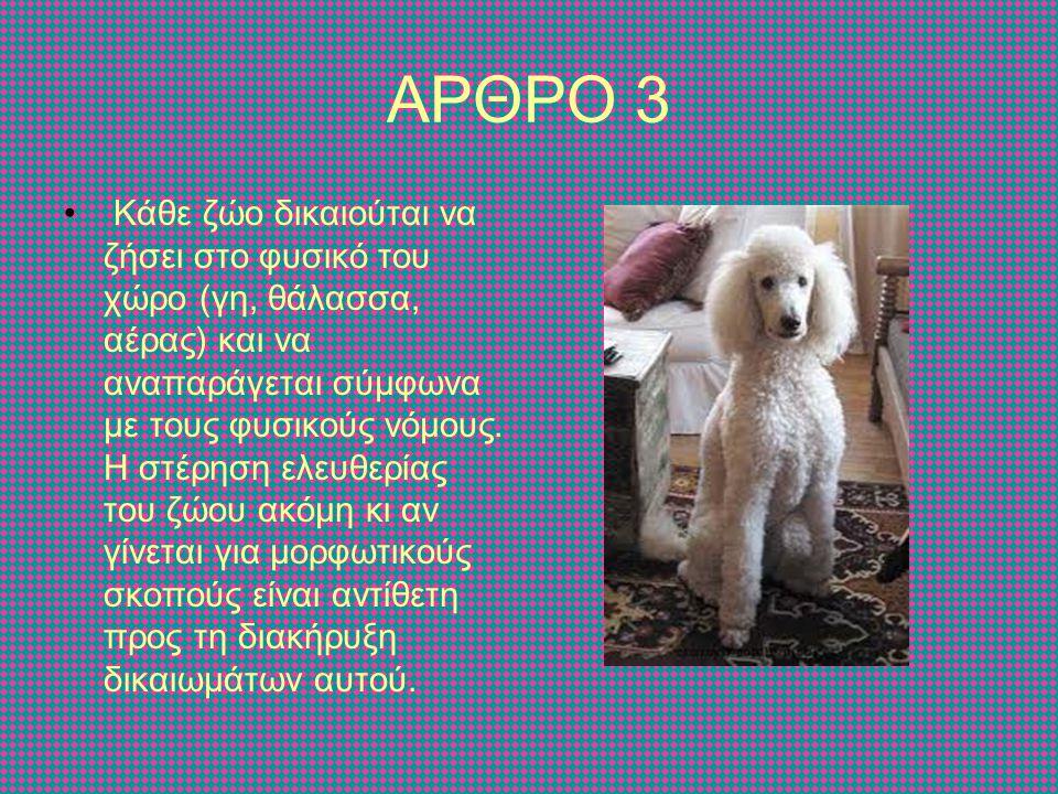 ΑΡΘΡΟ 3