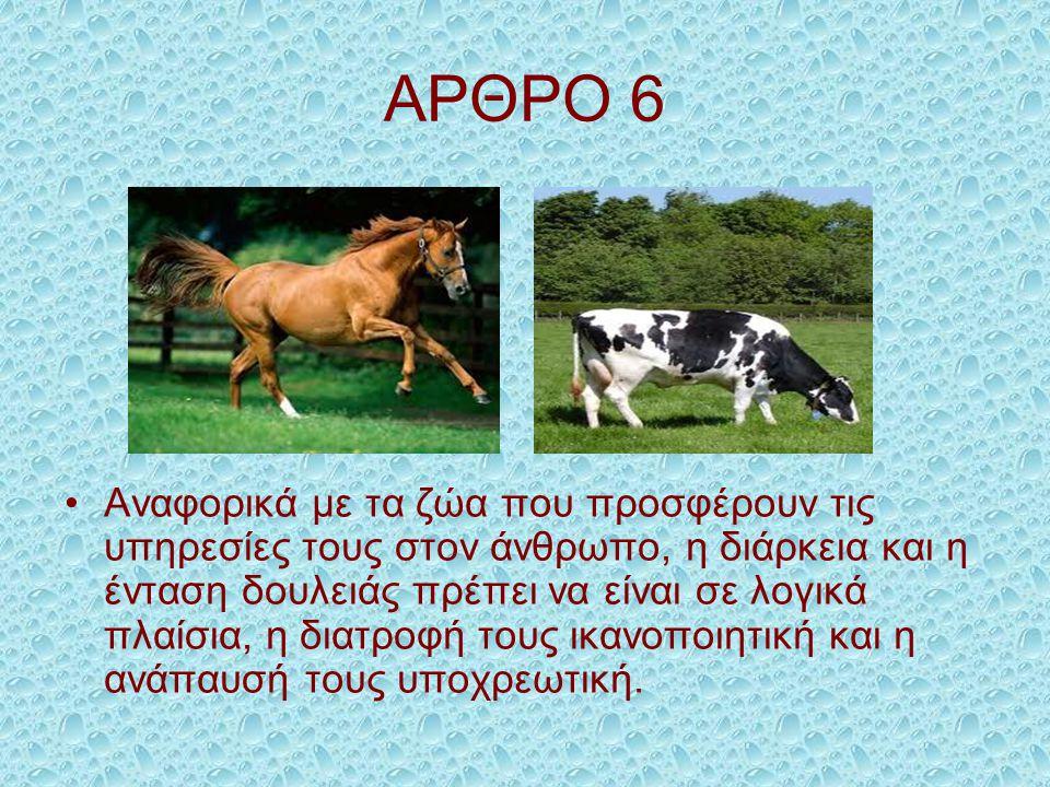 ΑΡΘΡΟ 6