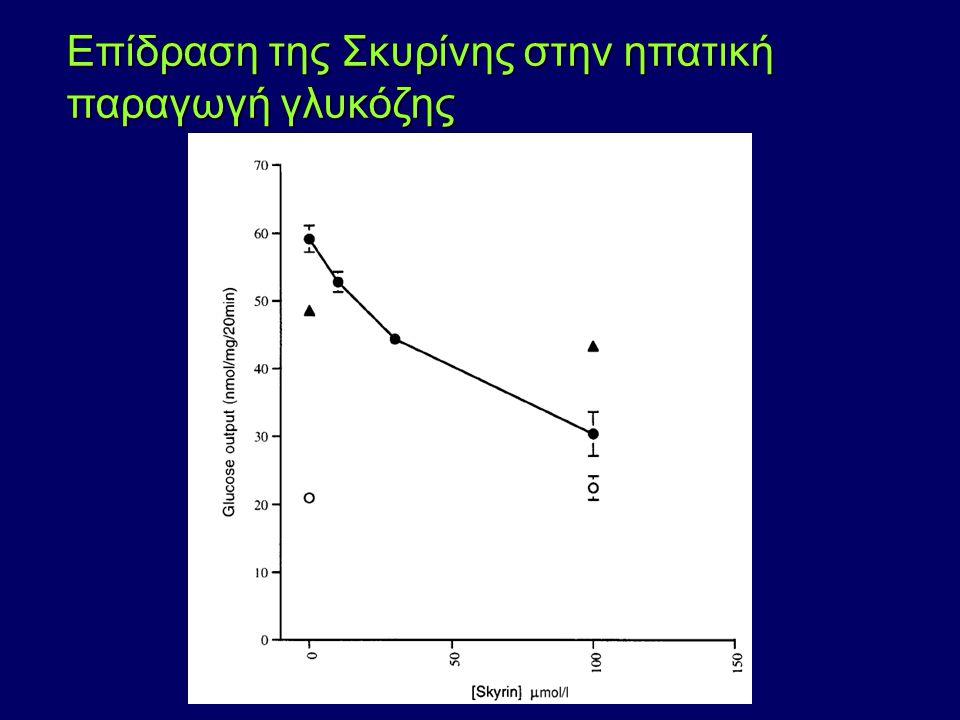 Eπίδραση της Σκυρίνης στην ηπατική παραγωγή γλυκόζης