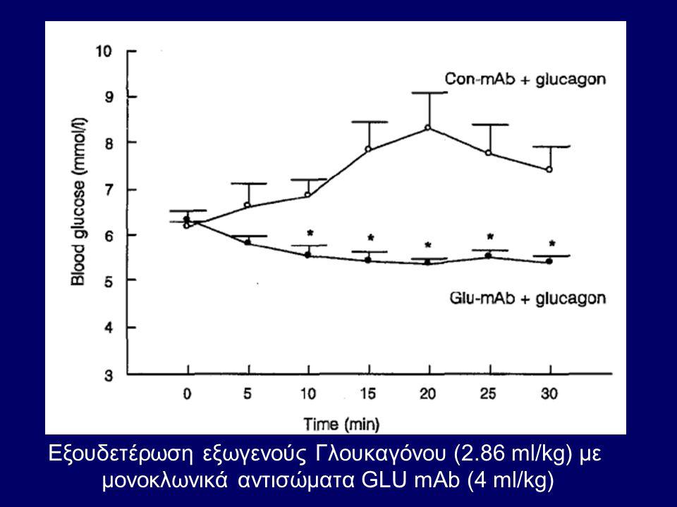 Εξουδετέρωση εξωγενούς Γλουκαγόνου (2.86 ml/kg) με