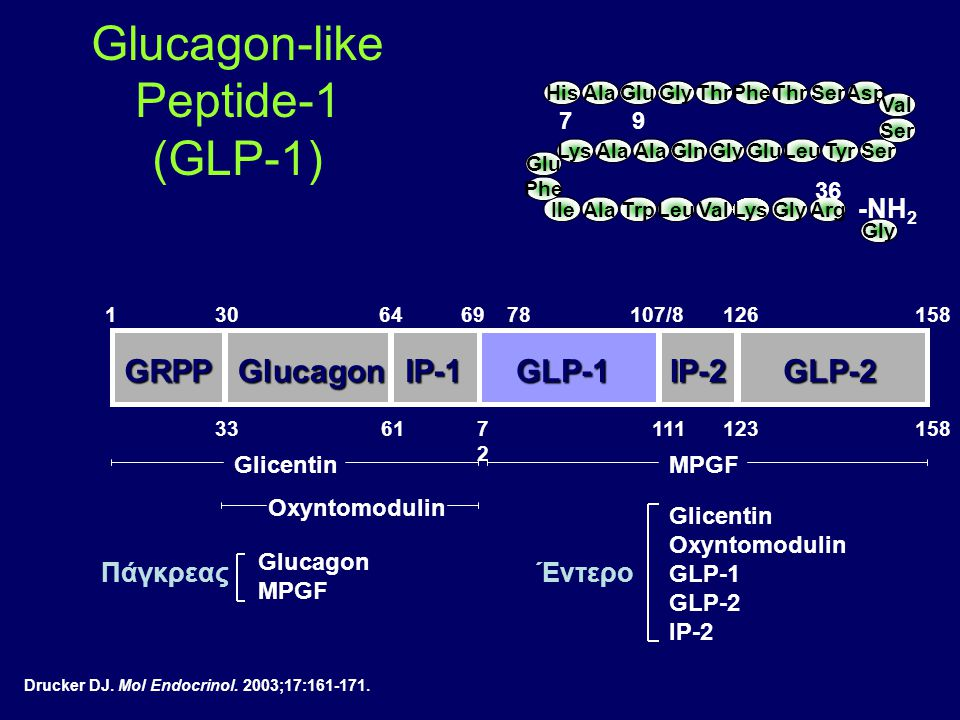 Glucagon-like Peptide-1 (GLP-1)