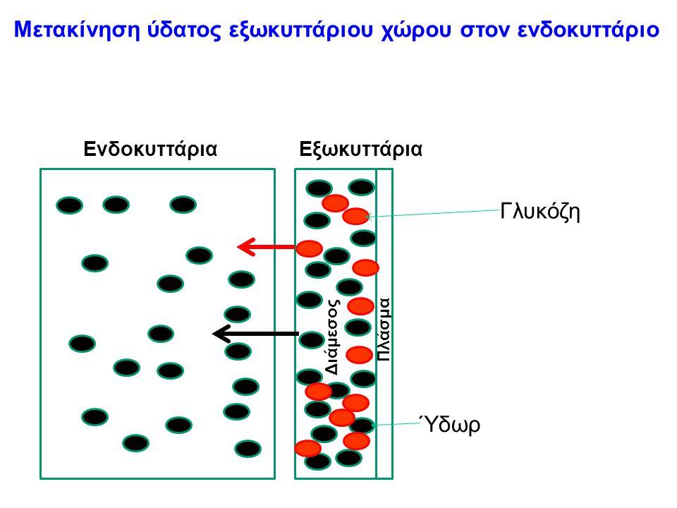 Μετακίνηση ύδατος εξωκυττάριου χώρου στον ενδοκυττάριο