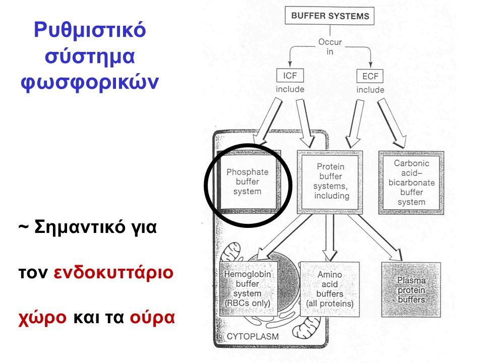 Ρυθμιστικό σύστημα φωσφορικών